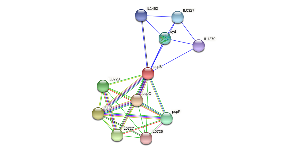 pspB protein (Idiomarina loihiensis) - STRING interaction network