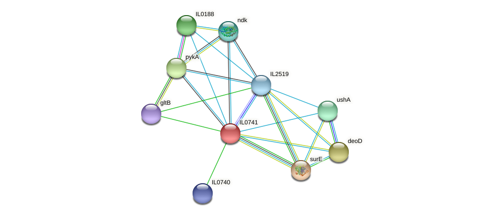 IL0741 protein (Idiomarina loihiensis) - STRING interaction network