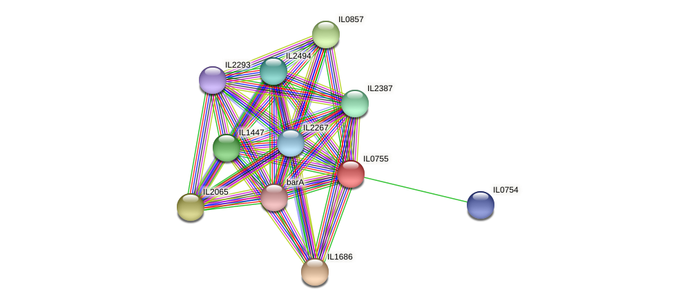 IL0755 protein (Idiomarina loihiensis) - STRING interaction network