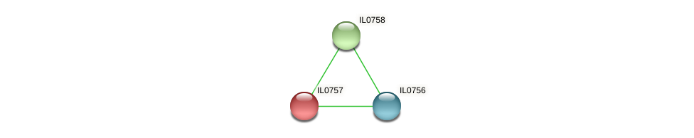 IL0757 protein (Idiomarina loihiensis) - STRING interaction network