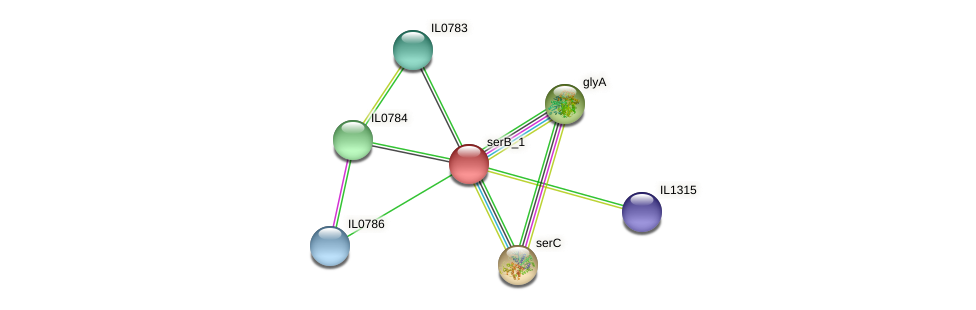 IL0785 protein (Idiomarina loihiensis) - STRING interaction network