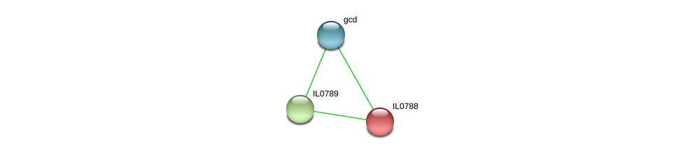 IL0788 protein (Idiomarina loihiensis) - STRING interaction network