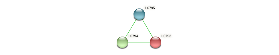 IL0793 protein (Idiomarina loihiensis) - STRING interaction network