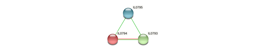 IL0794 protein (Idiomarina loihiensis) - STRING interaction network