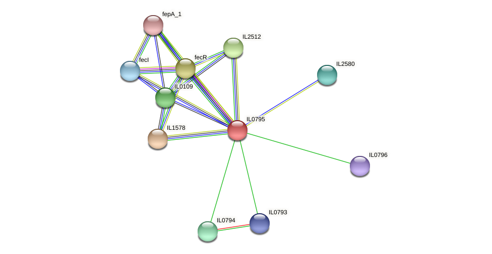 IL0795 protein (Idiomarina loihiensis) - STRING interaction network
