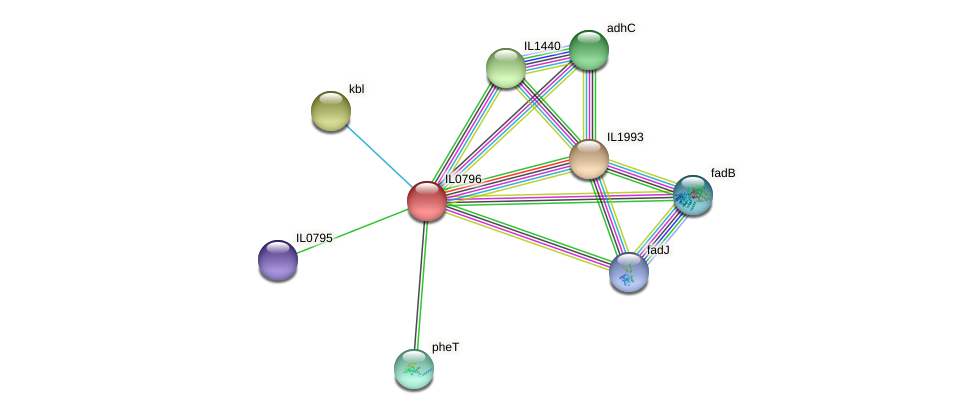 IL0796 protein (Idiomarina loihiensis) - STRING interaction network