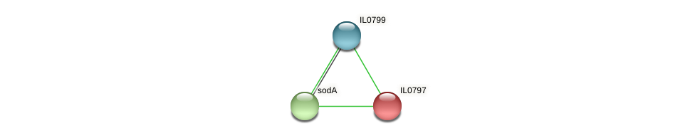 IL0797 protein (Idiomarina loihiensis) - STRING interaction network