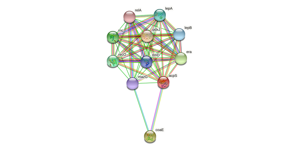 acpS protein (Idiomarina loihiensis) - STRING interaction network