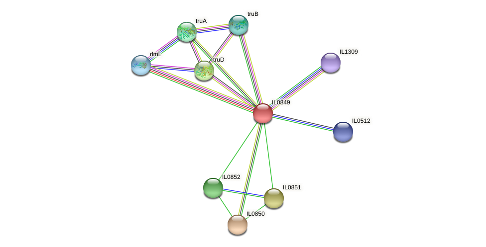 IL0849 protein (Idiomarina loihiensis) - STRING interaction network