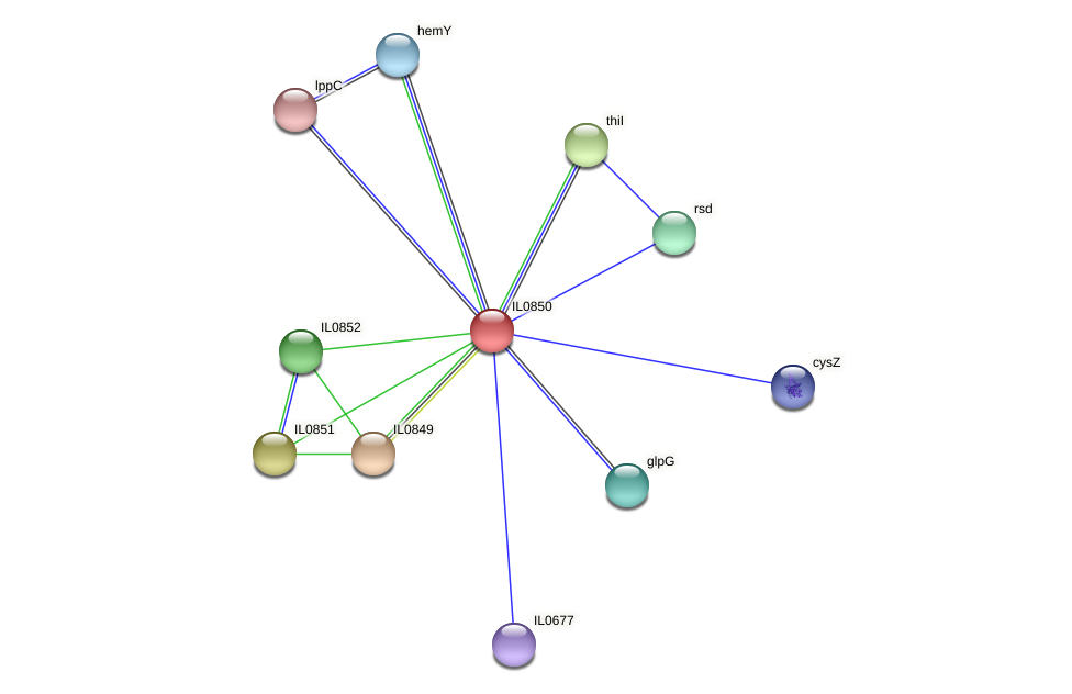 IL0850 protein (Idiomarina loihiensis) - STRING interaction network