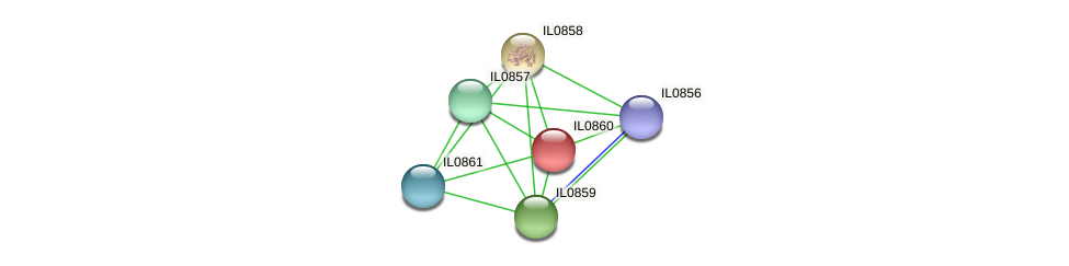 IL0860 protein (Idiomarina loihiensis) - STRING interaction network