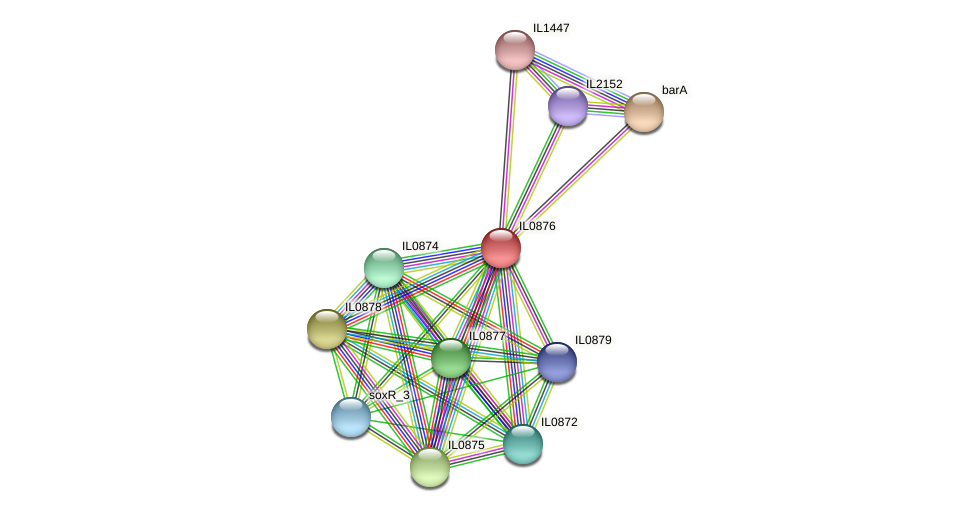 IL0876 protein (Idiomarina loihiensis) - STRING interaction network