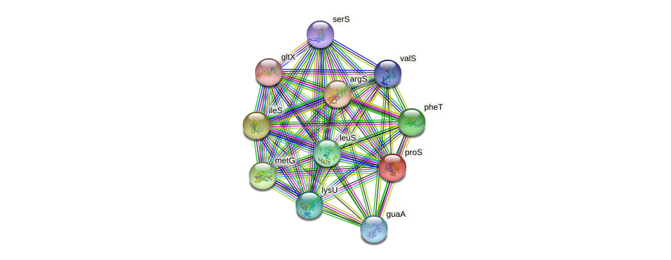 proS protein (Idiomarina loihiensis) - STRING interaction network