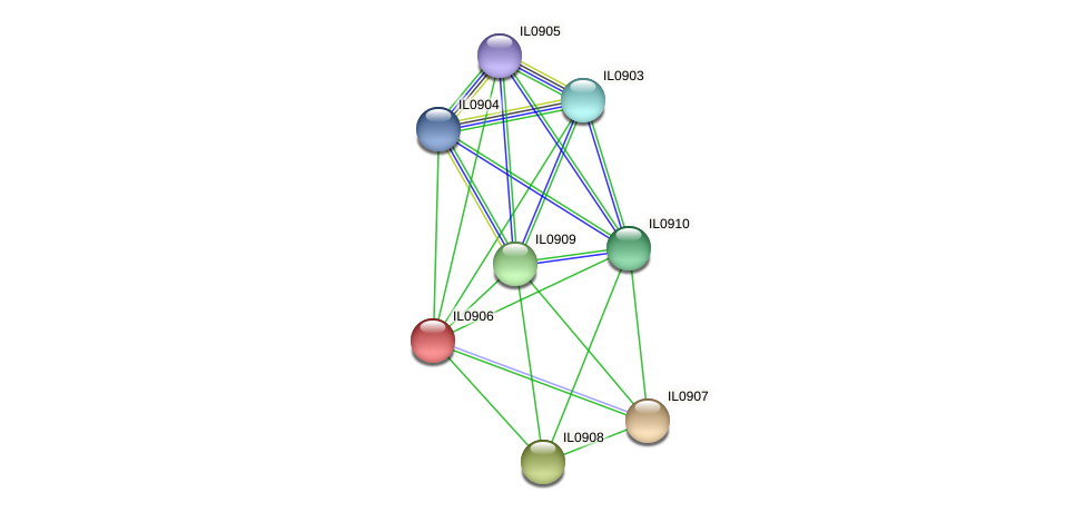 IL0906 protein (Idiomarina loihiensis) - STRING interaction network