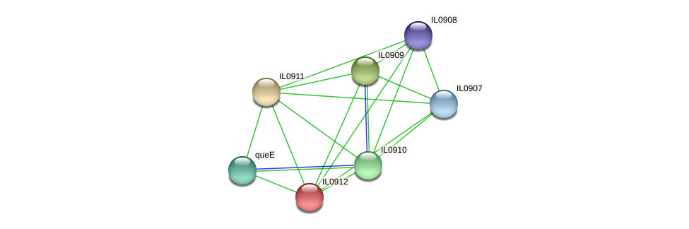 IL0912 protein (Idiomarina loihiensis) - STRING interaction network
