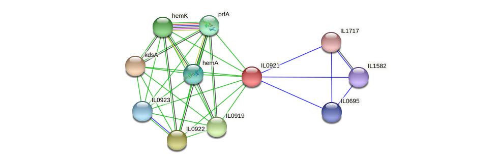 IL0921 protein (Idiomarina loihiensis) - STRING interaction network