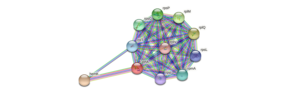 prfA protein (Idiomarina loihiensis) - STRING interaction network