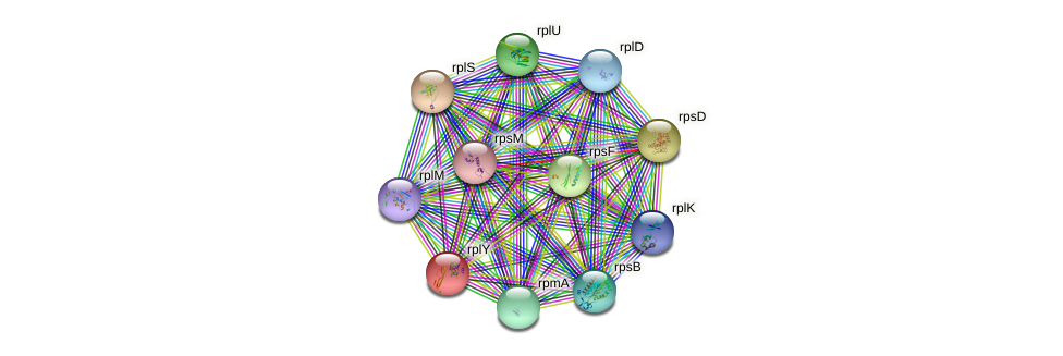 ctc protein (Idiomarina loihiensis) - STRING interaction network
