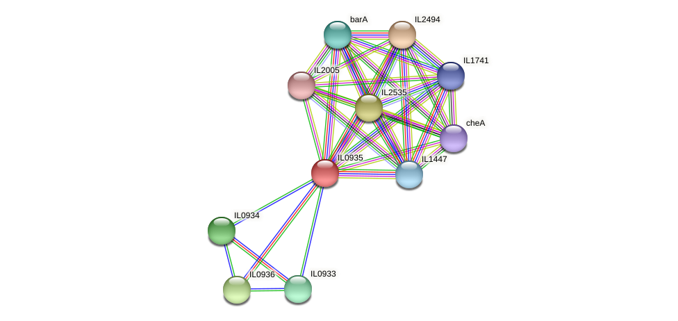 IL0935 protein (Idiomarina loihiensis) - STRING interaction network