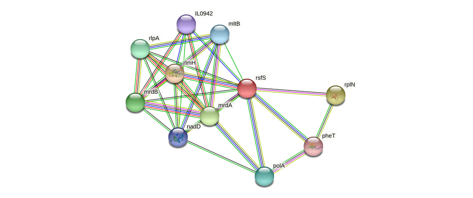 rsfS protein (Idiomarina loihiensis) - STRING interaction network
