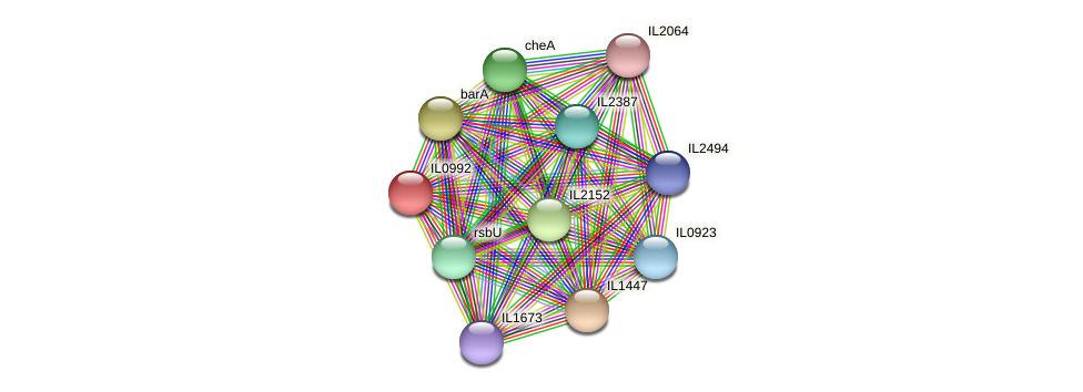 IL0992 protein (Idiomarina loihiensis) - STRING interaction network