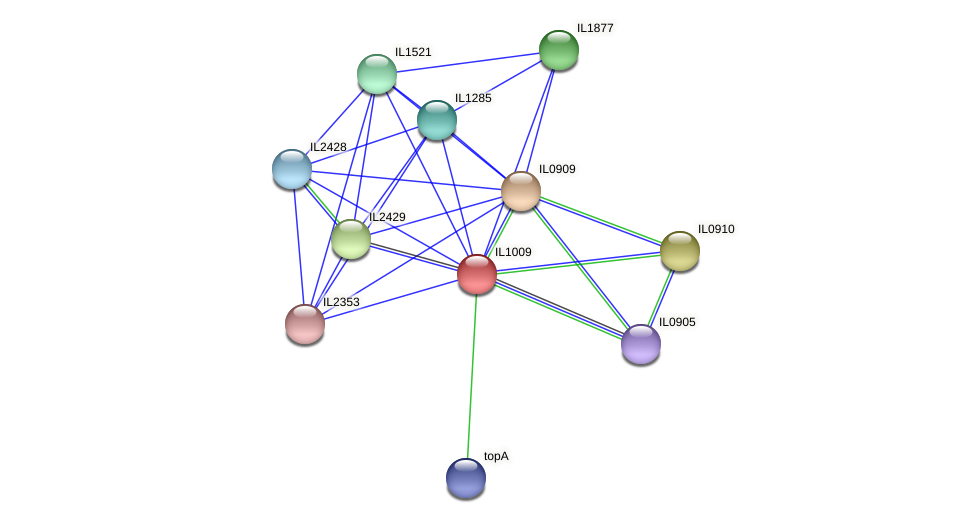 IL1009 protein (Idiomarina loihiensis) - STRING interaction network