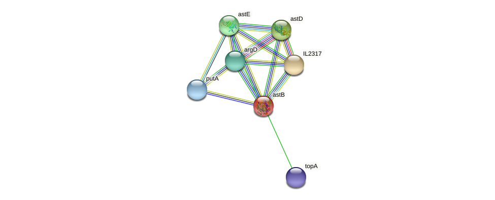astB protein (Idiomarina loihiensis) - STRING interaction network