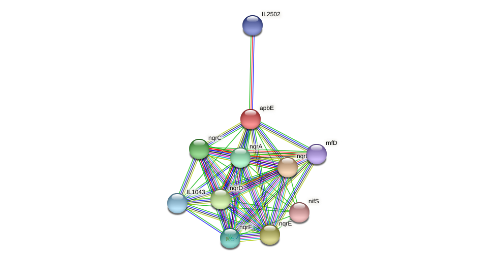 apbE protein (Idiomarina loihiensis) - STRING interaction network
