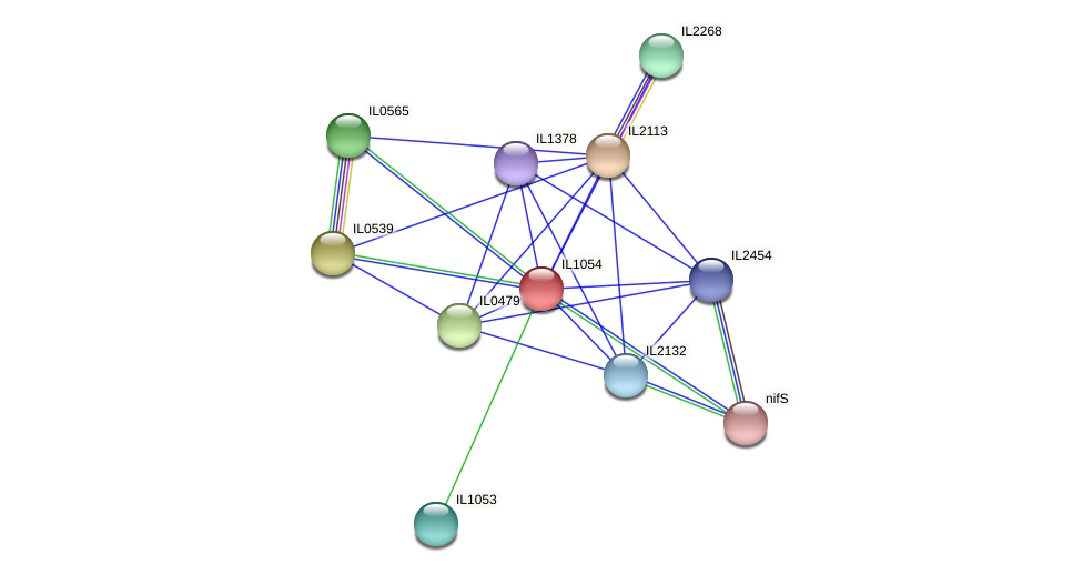 IL1054 protein (Idiomarina loihiensis) - STRING interaction network