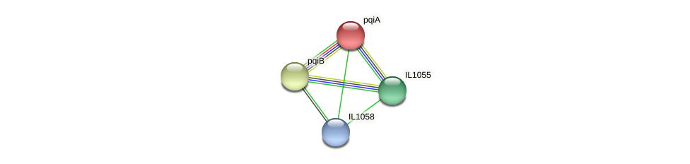 pqiA protein (Idiomarina loihiensis) - STRING interaction network