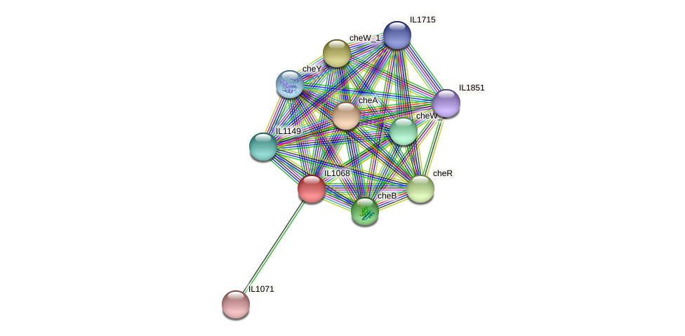 IL1068 protein (Idiomarina loihiensis) - STRING interaction network