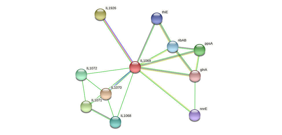IL1069 protein (Idiomarina loihiensis) - STRING interaction network