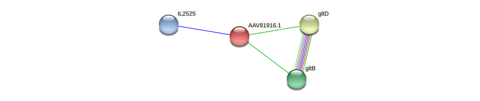 AAV81916.1 protein (Idiomarina loihiensis) - STRING interaction network