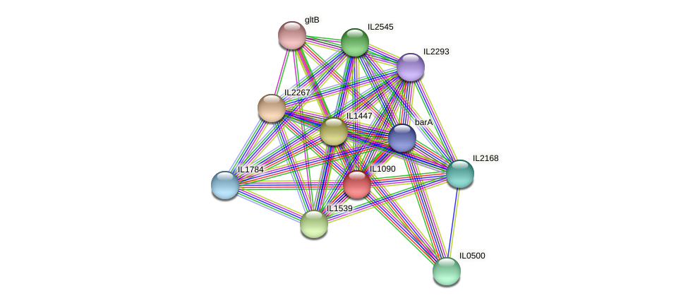 IL1090 protein (Idiomarina loihiensis) - STRING interaction network