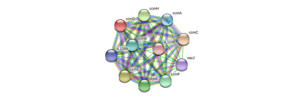 ccmD protein (Idiomarina loihiensis) - STRING interaction network