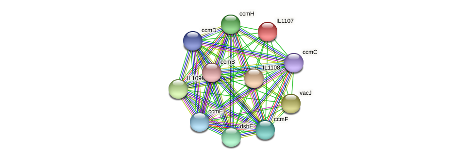 IL1107 protein (Idiomarina loihiensis) - STRING interaction network