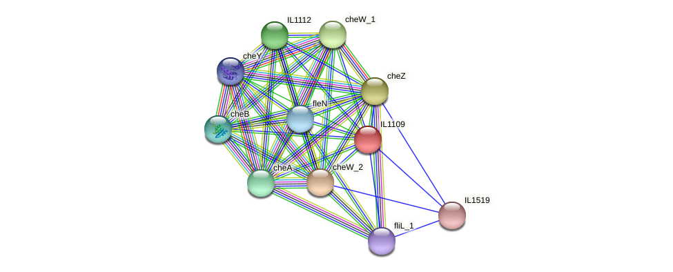 IL1109 protein (Idiomarina loihiensis) - STRING interaction network