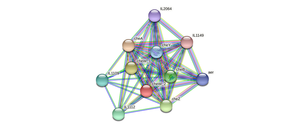 IL1111 protein (Idiomarina loihiensis) - STRING interaction network