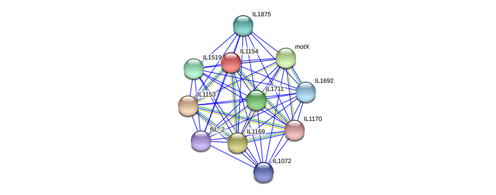 IL1154 protein (Idiomarina loihiensis) - STRING interaction network