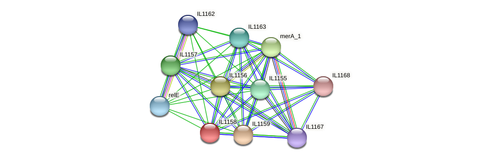 IL1158 protein (Idiomarina loihiensis) - STRING interaction network