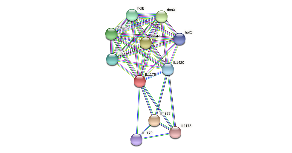 IL1176 protein (Idiomarina loihiensis) - STRING interaction network
