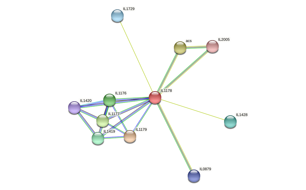 IL1178 protein (Idiomarina loihiensis) - STRING interaction network