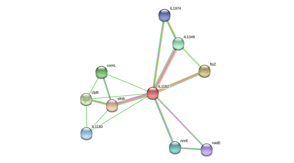 IL1182 protein (Idiomarina loihiensis) - STRING interaction network