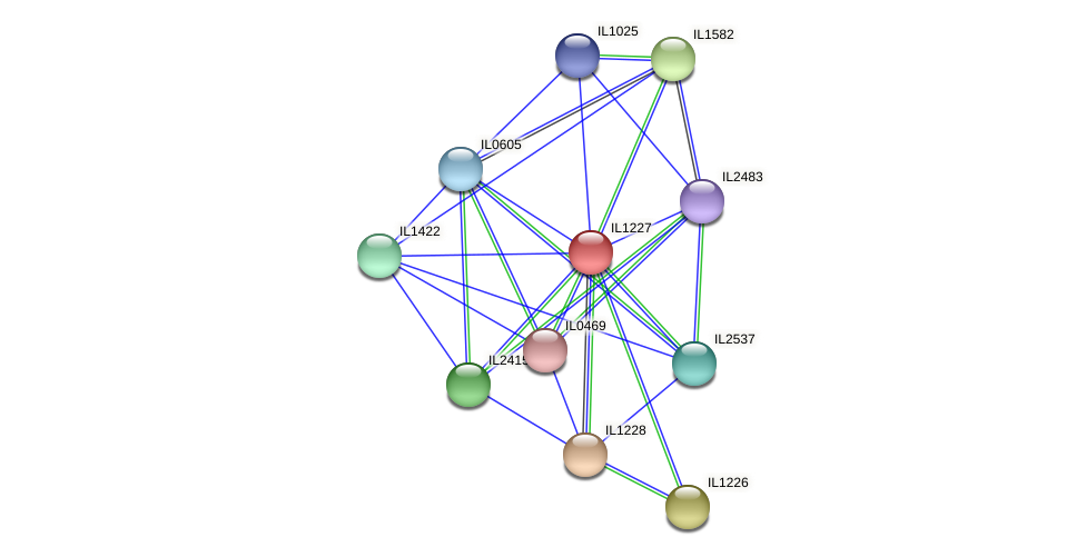 IL1227 protein (Idiomarina loihiensis) - STRING interaction network