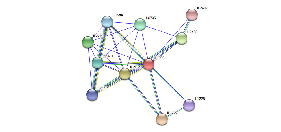 IL1228 protein (Idiomarina loihiensis) - STRING interaction network