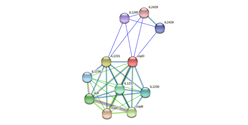 copD protein (Idiomarina loihiensis) - STRING interaction network