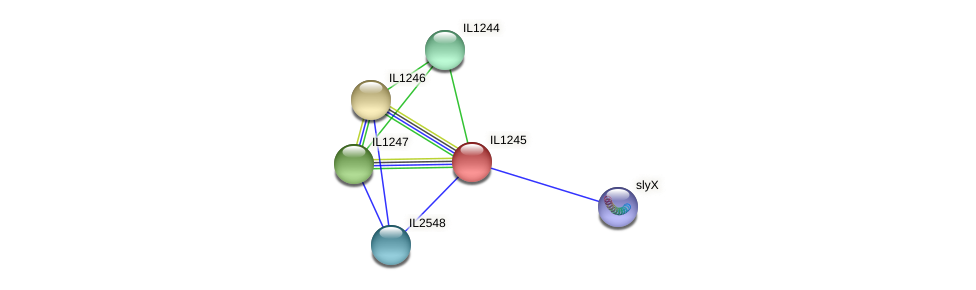 IL1245 protein (Idiomarina loihiensis) - STRING interaction network