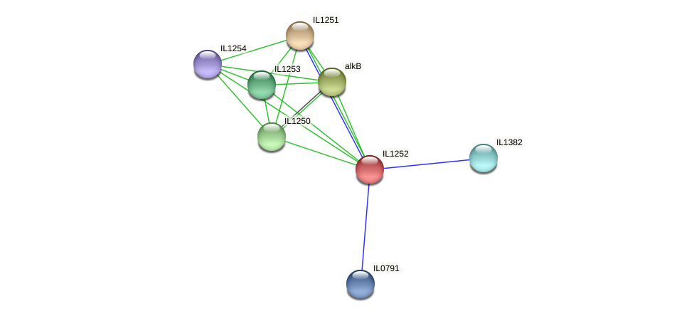 IL1252 protein (Idiomarina loihiensis) - STRING interaction network