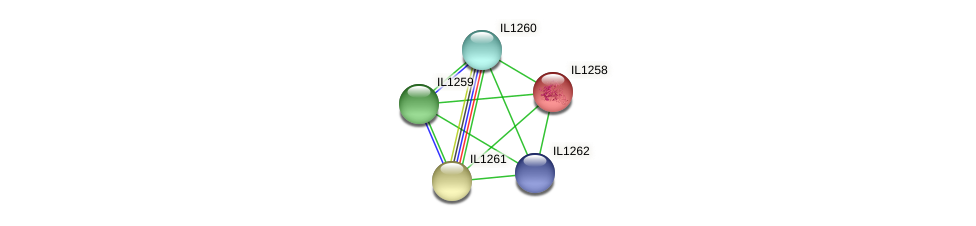 IL1258 protein (Idiomarina loihiensis) - STRING interaction network