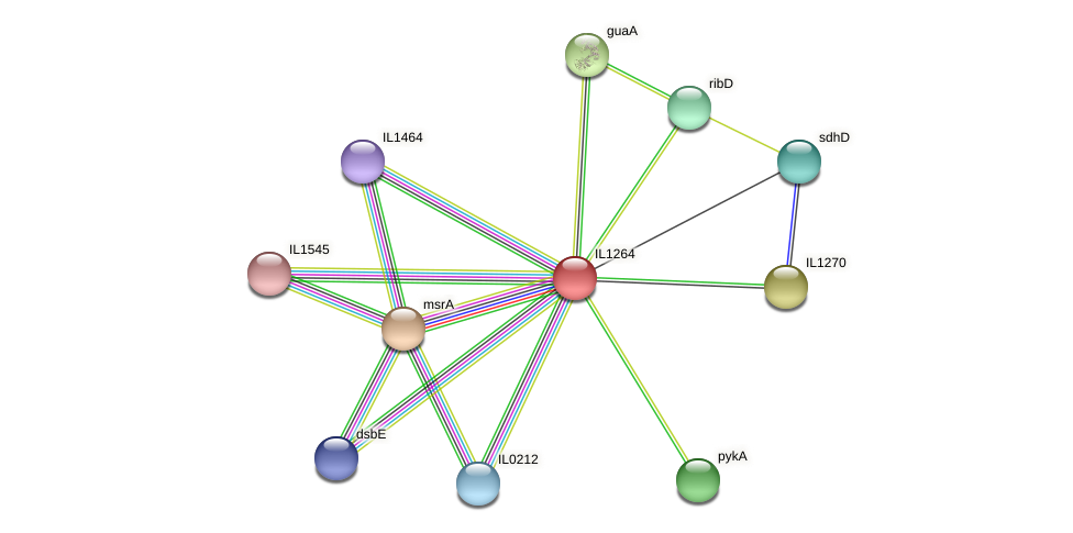 IL1264 protein (Idiomarina loihiensis) - STRING interaction network